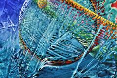Etoile-de-la-mer-–-20-p-x-24-p-–-acrylique